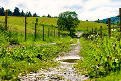 Der Weg in Deutschland Lizenzfreies Stockbild