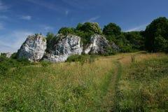 Der Weg durch die Wiese zu den Felsen lizenzfreies stockbild