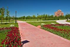 Der Weg im Park mit Tulpen Stockfotos