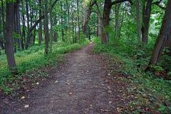 Der Weg im Stadtsommer Park stockbilder