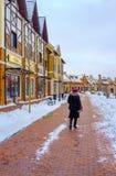 Der Weg im Winter Kiew stockfoto
