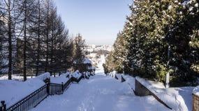 Der Weg in der Stadt wird mit Schnee verunreinigt lizenzfreie stockbilder
