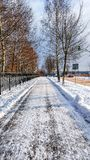 Der Weg wird vom Schnee, im Winter gesäubert, den der Schnee auf den Asphalt in der Stadt geklärt wird Eine geklärte Straße für P Stockfoto