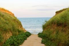 Der Weg zum Meer Lizenzfreie Stockfotos