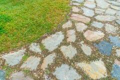 Der Wegweg im Park mit grünem Gras Stockfoto