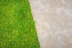 Der Wegweg im Park mit grünem Gras Lizenzfreie Stockfotografie