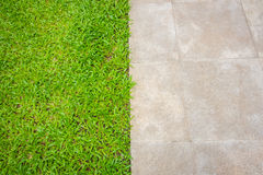 Der Wegweg im Park mit grünem Gras Stockfotografie