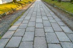 Der Wegweg im Park mit grünem Gras Lizenzfreies Stockfoto