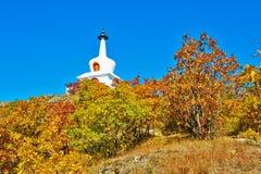 Der weiße Turm- und Herbstwald Lizenzfreies Stockfoto