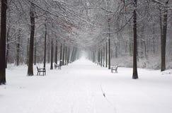 Der weiße Weg Stockfoto