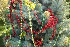 Der Weihnachtsbaum, der mit Perlen und Weihnachten verziert wird, spielt draußen natürliches lizenzfreies stockbild