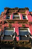 der weinberankten Fassade eines alten Harlem-Brownstonegebäudes oben betrachten, Manhattan, New York City, NY, USA stockfotografie