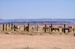 Der wilde Westen 3 lizenzfreies stockfoto