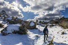 Der Winter kommt und die Schneedecken die Steigungen des ` Herreria-` Waldes an EL Escorial, Madrid, Spanien stockfoto