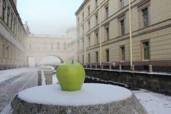 Der Winter St Petersburg lizenzfreies stockbild