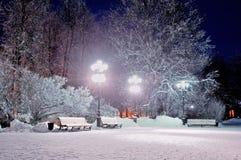 Der Winterabend im Park Lizenzfreie Stockfotografie