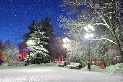Der Winterabend im Park Lizenzfreie Stockbilder