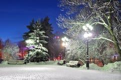 Der Winterabend im Park Stockfotografie