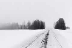 Der Winterwald hat in Nebel getaucht stockbilder