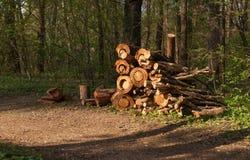 Der Woodpile auf Rand des Waldes Lizenzfreies Stockbild
