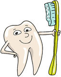 Der Zahn Lizenzfreie Abbildung