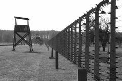 Der Zaun Stockbilder
