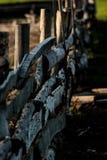 Der Zaun, auf dem zwei Raben sitzen Sie Stockbilder