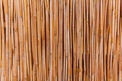 Der Zaun der Stiele des Stocks Stockbilder