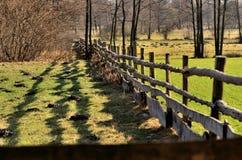 Der Zaun um die Weide. Stockbilder