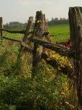 Der Zaun und der Bauernhof Stockfotografie
