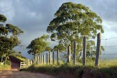 Der Zaun und der Schotterweg schön beleuchtet Stockfotografie
