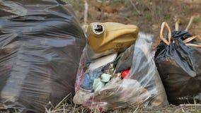 Der zerrissene Abfall sackt das Paket ein und bereitet Klimafreienverschmutzung des grünen Behälters auf stock video footage