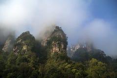 Der Zhangjiajie Stockbilder