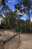 Der Zoo Stockbilder