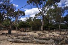 Der Zoo Stockfoto