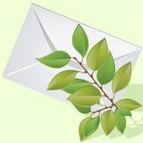 Der Zweig liegt auf einem Umschlag. Stockbilder