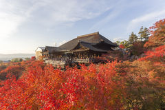 dera遗产日本kiyomizu京都列出了寺庙科教文组织世界 免版税图库摄影