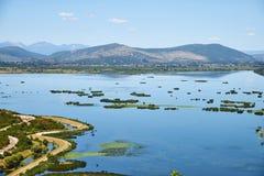 Deransko sjön, den Hutovo Blato naturen parkerar nära Mostar Arkivbilder
