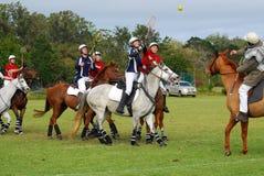 deras hästspelarepolocrosse Fotografering för Bildbyråer