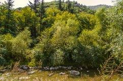 Derbent flod med lerigt vatten och stenar i den Lori regionen av Armenien Arkivfoton