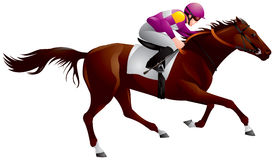 Derby, Equestrian sport horse and rider 6. Derby, Equestrian sport horse and rider in vector variant 6, Thoroughbred horse, gambling, The Sport of Kings Royalty Free Stock Images