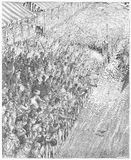 The derby - finish of the race. Picture from Gustave Dore's London: a Pilgrimage illustrated book published in 1873, London - UK Royalty Free Stock Photo