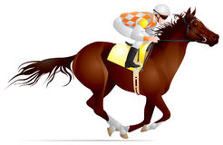 Derby, raça de cavalo Fotografia de Stock