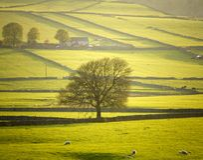 derbyshire England parku narodowego szczyt komunalne Obraz Stock