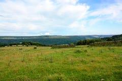 Derbyshire fält med brutna dagstenväggar Arkivfoton