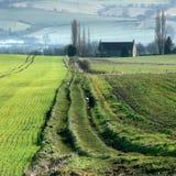 Derbyshire gospodarstwo rolne Obrazy Stock