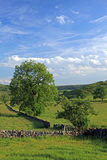 Derbyshire landscape. Hills, fields and walls in Derbyshire, England Stock Images