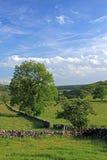 derbyshire liggande Arkivbilder