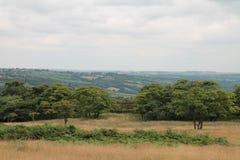 Derbyshire-Täler Stockbild