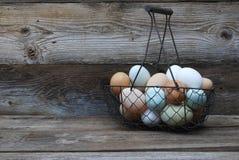 Derecho del gallinero Imagen de archivo libre de regalías